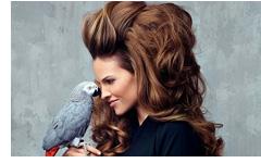 leo-beauty-big-hair