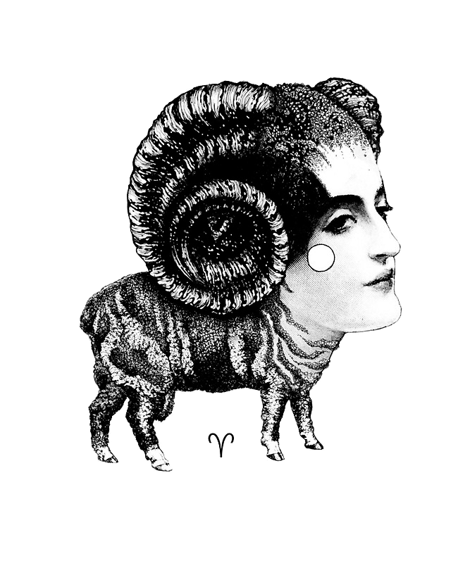 Don't Butt Heads With Aries, The Zodiac's Ram...