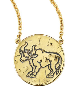 amy-zerner-astrology-necklace-taurus